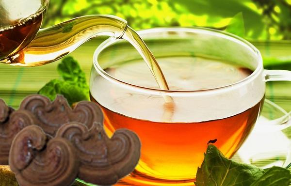 Xin giấy phép công bố chất lượng nấm linh chi sản xuất tại Tp.HCM